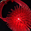 Urchin Bracelet